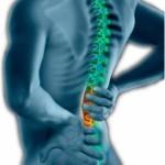 Sindicato oferece atendimentos de Quiropraxia
