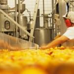 Sindicato da Indústria de Alimentos atenderá na sede do Sindicato dos Sapateiros